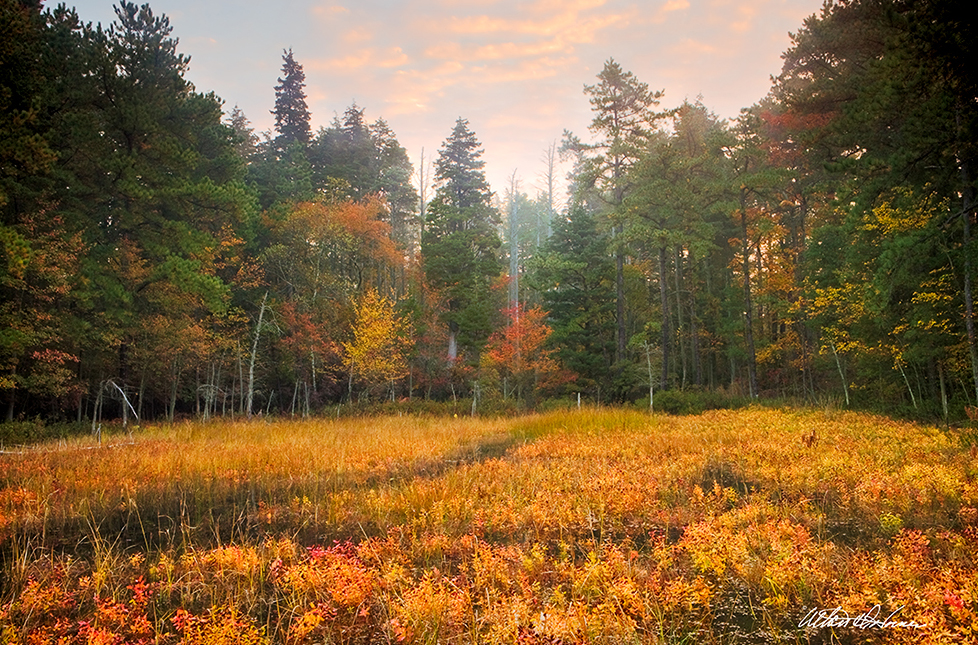 """Fall Meadow""  - (A,E,F)"