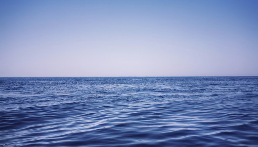 https://sciencing.com/animals-live-pelagic-zone-8429464.html