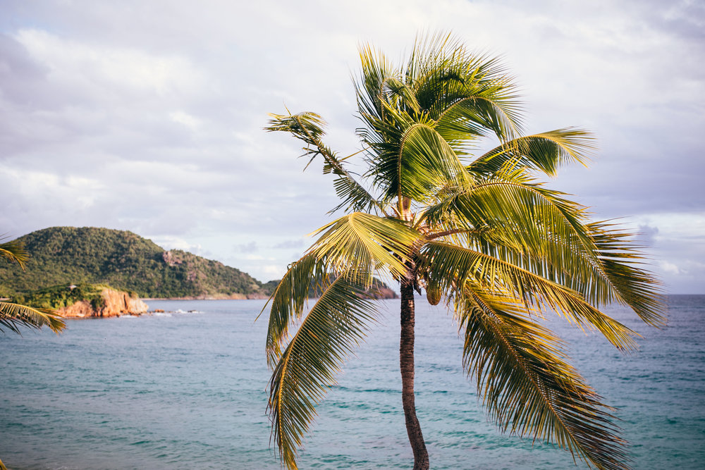 Antigua-3.jpg