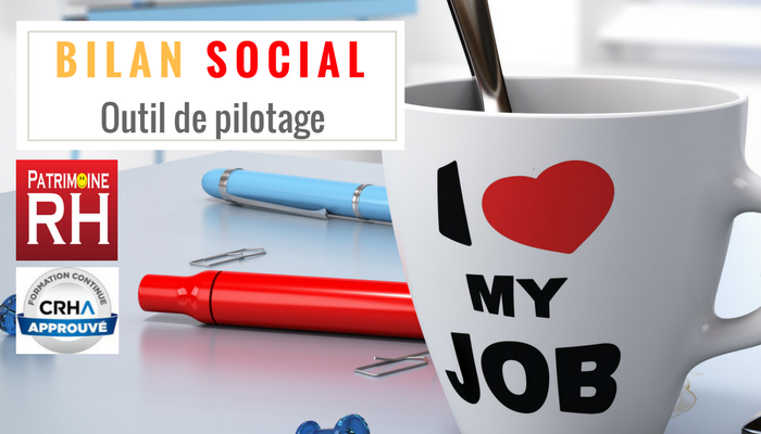 Bilan Social -Patrimoine RH 2.png