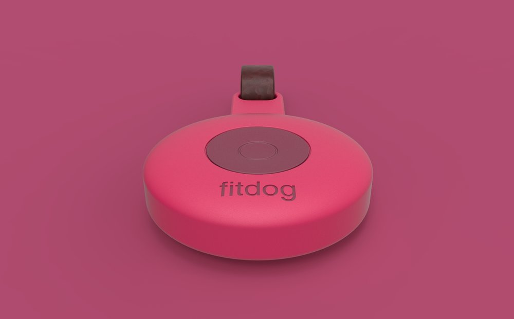 fitdog aggo design studio 004.jpg