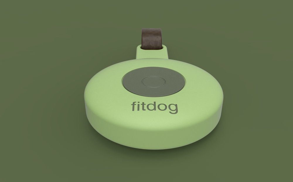 fitdog aggo design studio 007.jpg