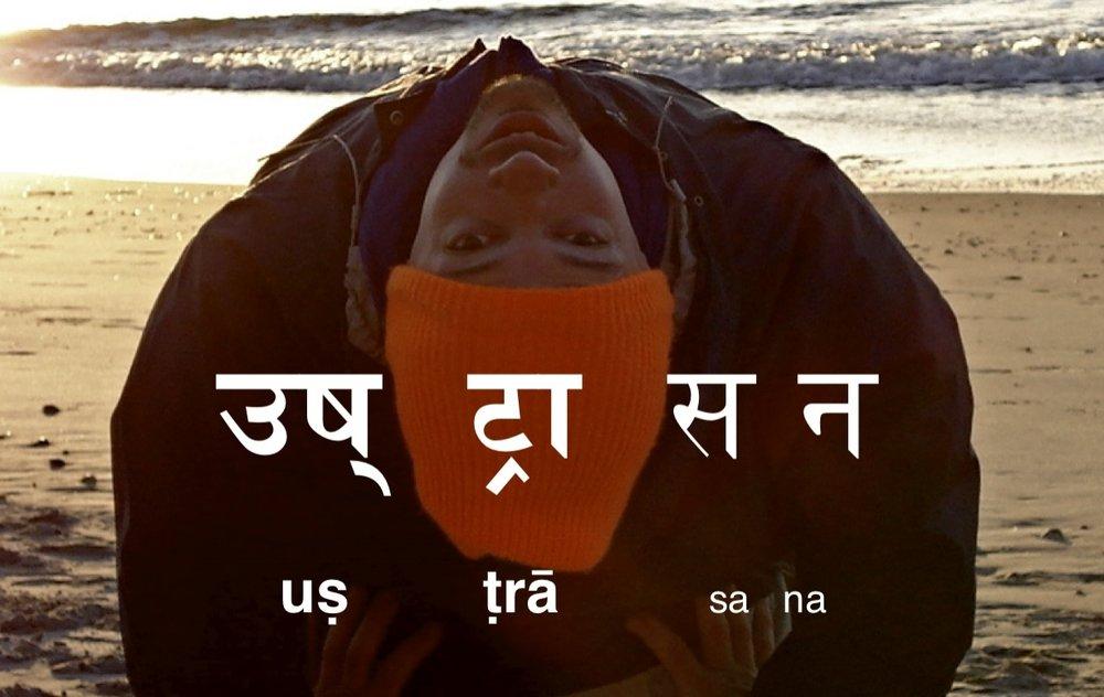 "camel pose  ""uṣṭrāsana"""