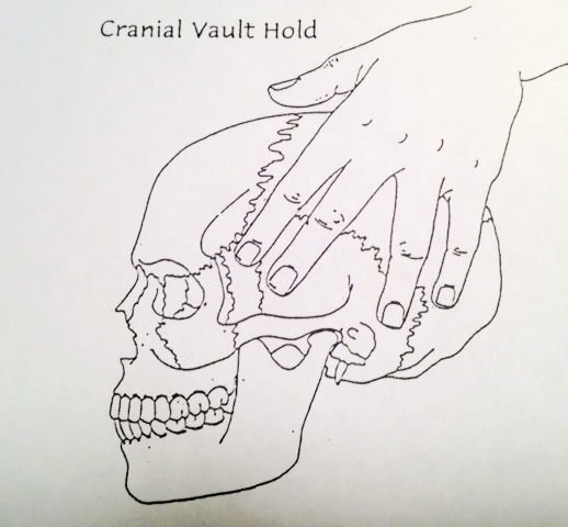 craniosacral therapy cranial vault hold.JPG