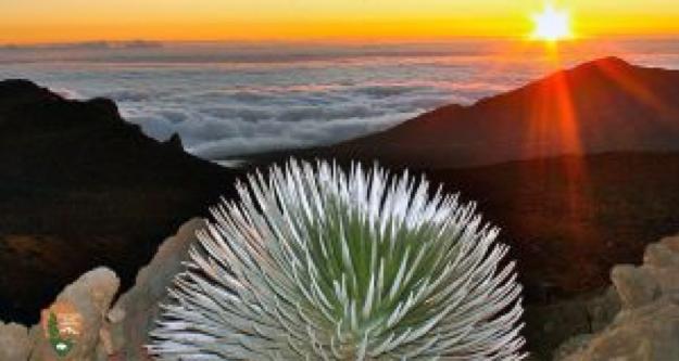 Maui Haleakala Sunrise.png