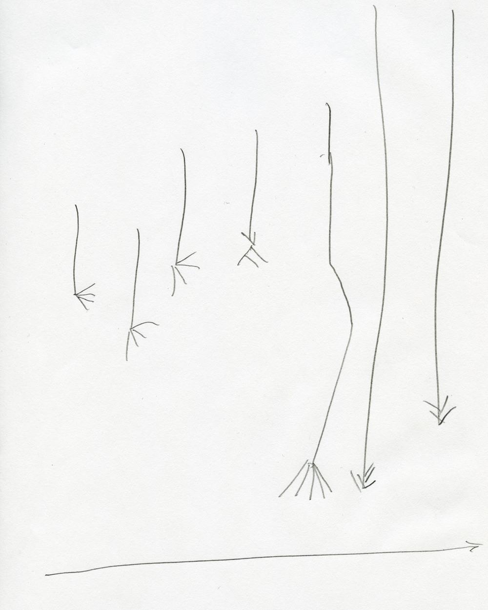 feettime.jpg