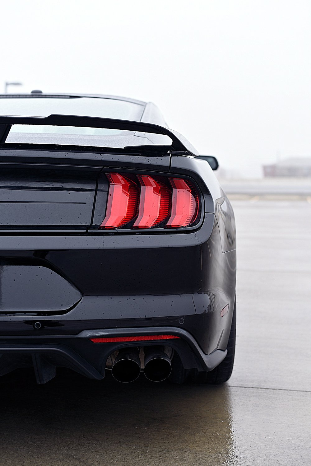 Mustang-Tail-Lights2.jpg