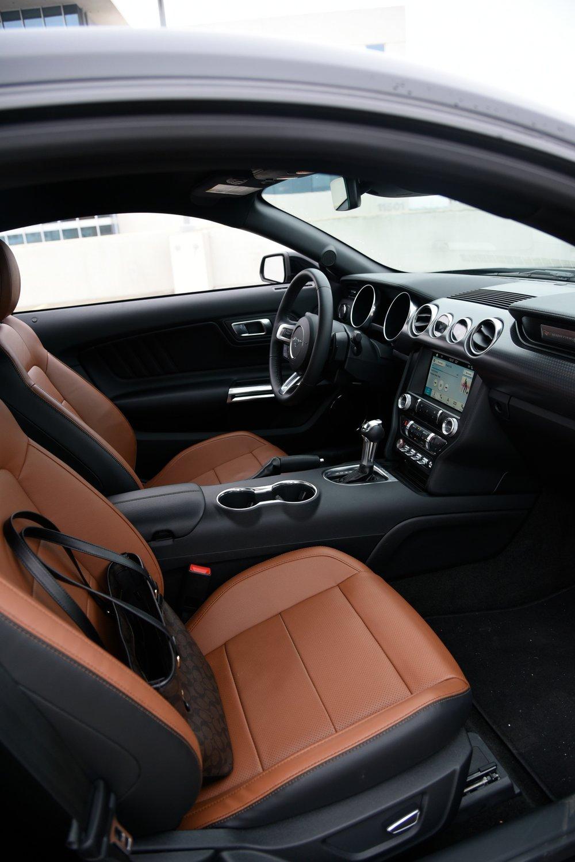 Mustang-Interior-Side-2.jpg