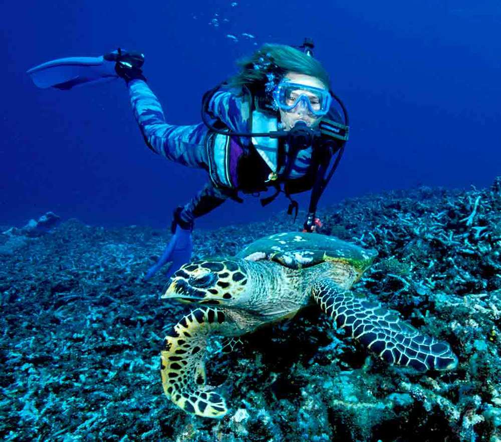 Gili-Trawangan-Lombok-Activities-Activity-Scuba-Scubadive-Scubadiving-Dive-Diving-73.jpg