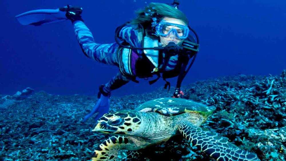 Gili-Trawangan-Lombok-Activities-Activity-Scuba-Scubadive-Scubadiving-Dive-Diving-03.jpg