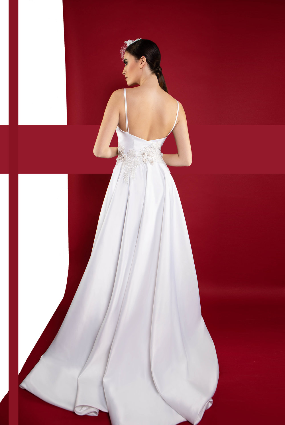 ball_gown_wedding_dress_back_view_tabitha_fielteau