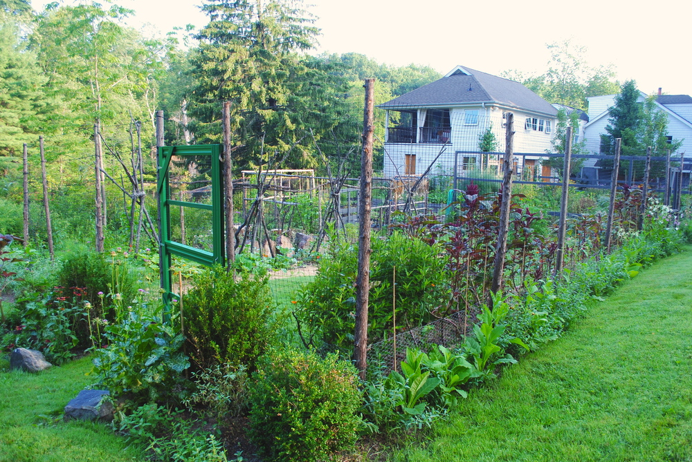 The garden from the front
