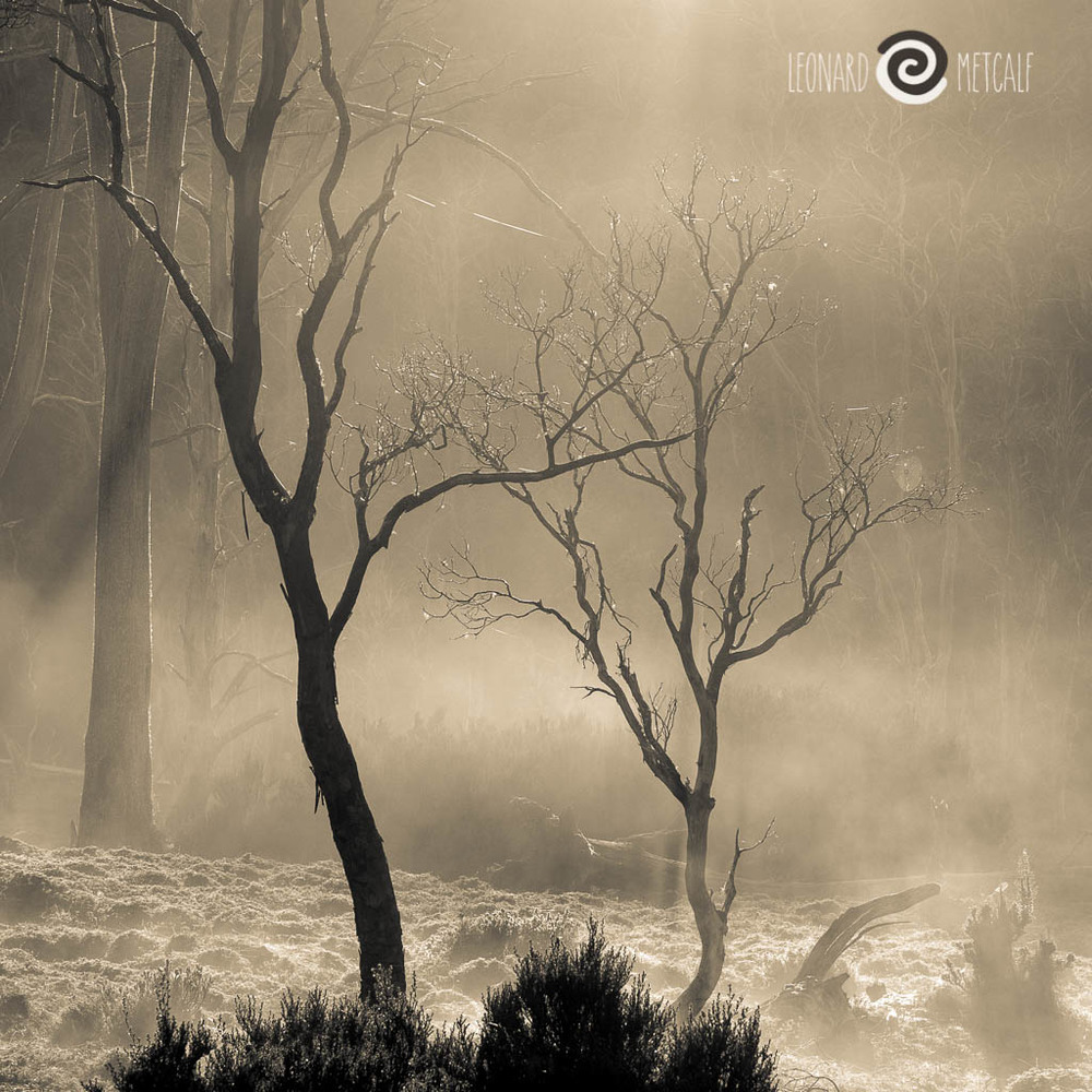 Rising mist, Cradle Mountain © Leonard Metcalf 2015