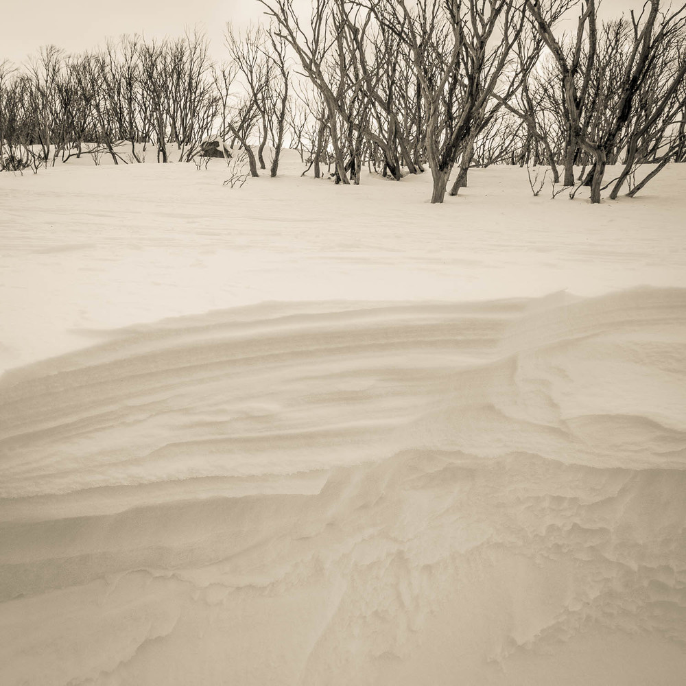 A wall of snow with windblown patterns and striations. Copyright © Len Metcalf 2016