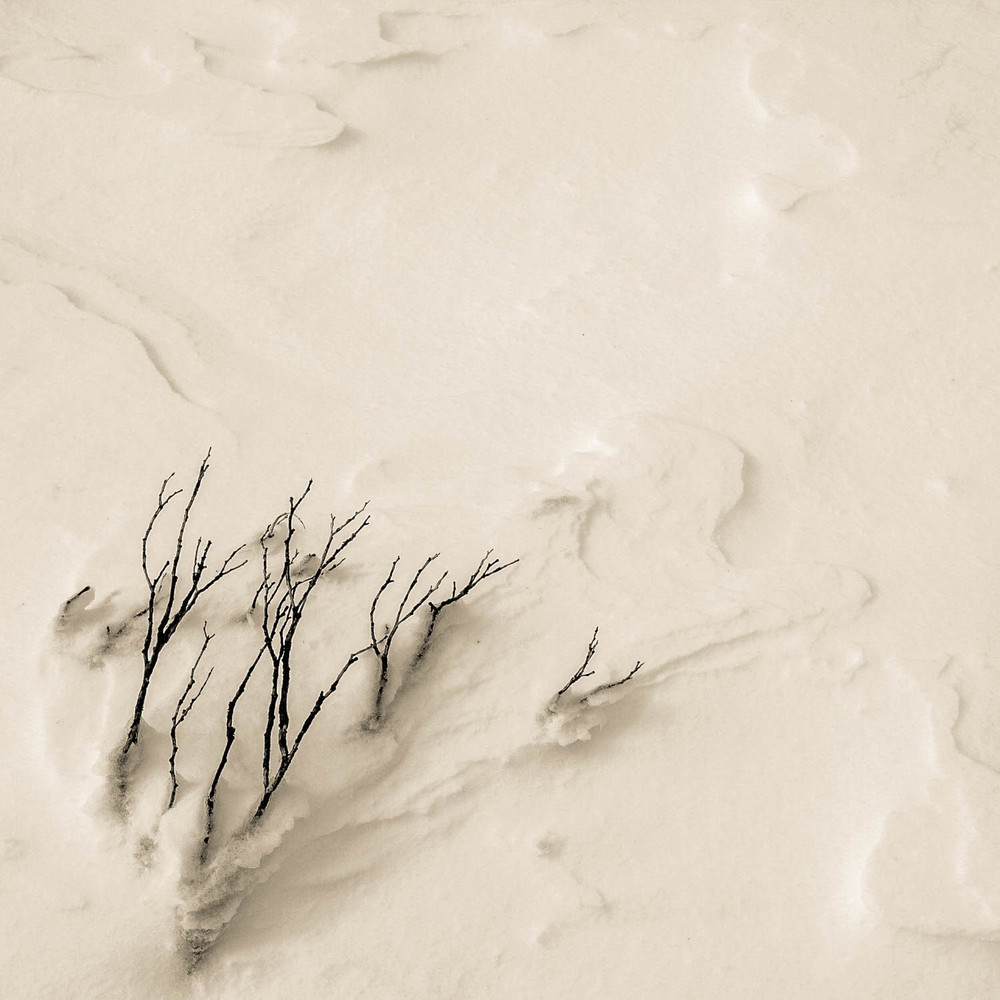 Twigs create patterns in the wind blown snow Copyright © Len Metcalf 2016