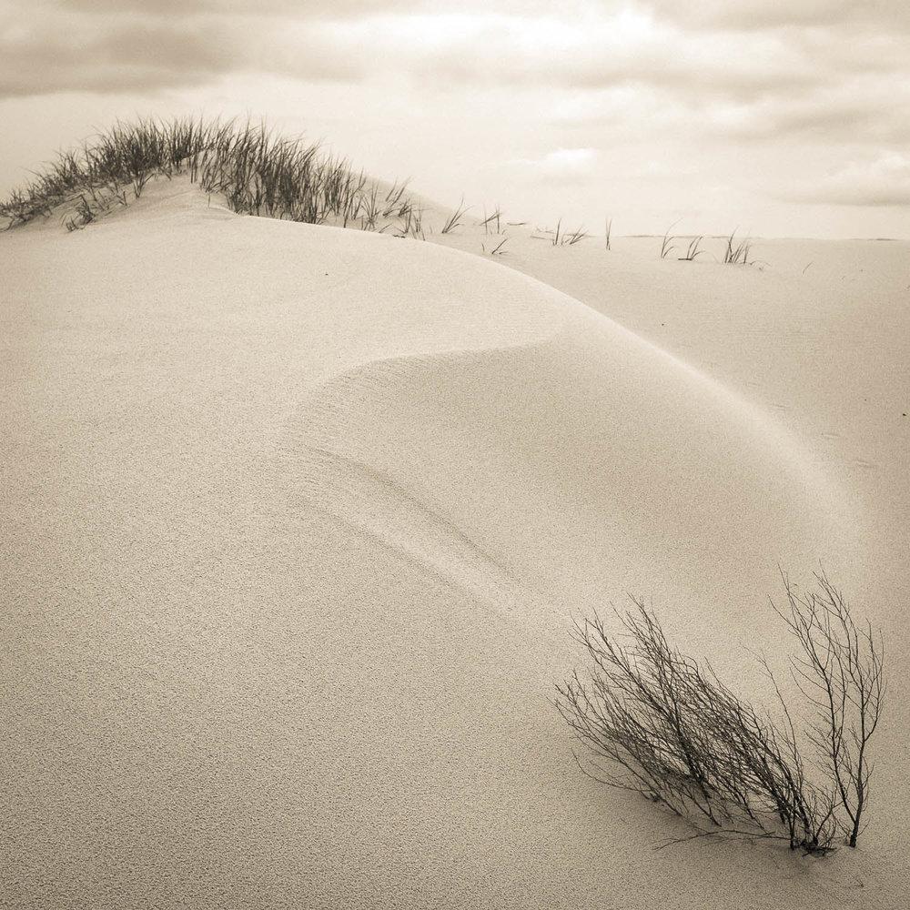 Photograph Copyright © Len Metcalf