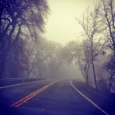Fog in the river road, photograph by Diana Toledano