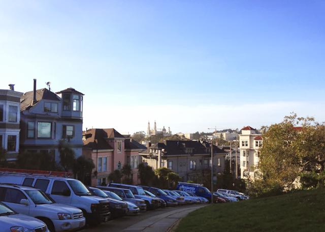 picture of buena vista park in san francisco