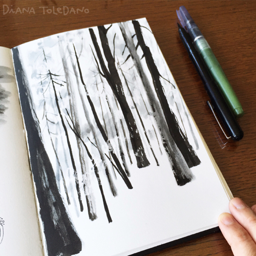 redwoods-sketch
