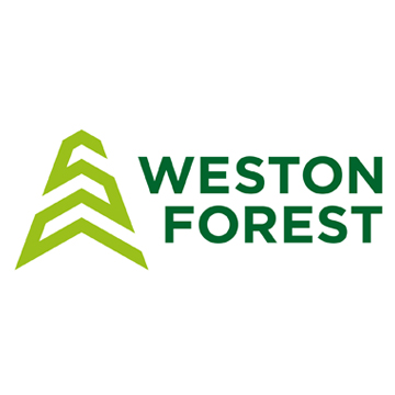 westonForest2.jpg