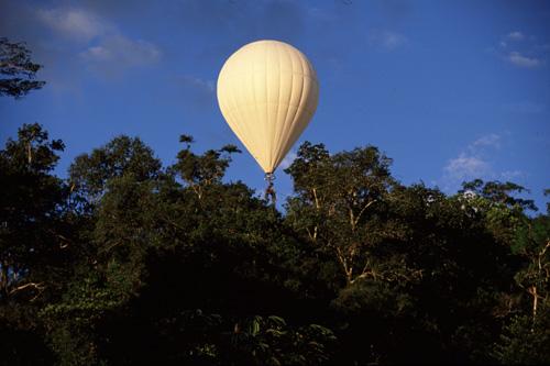 Canopy Bubble © Dany Cleyet-Marrel