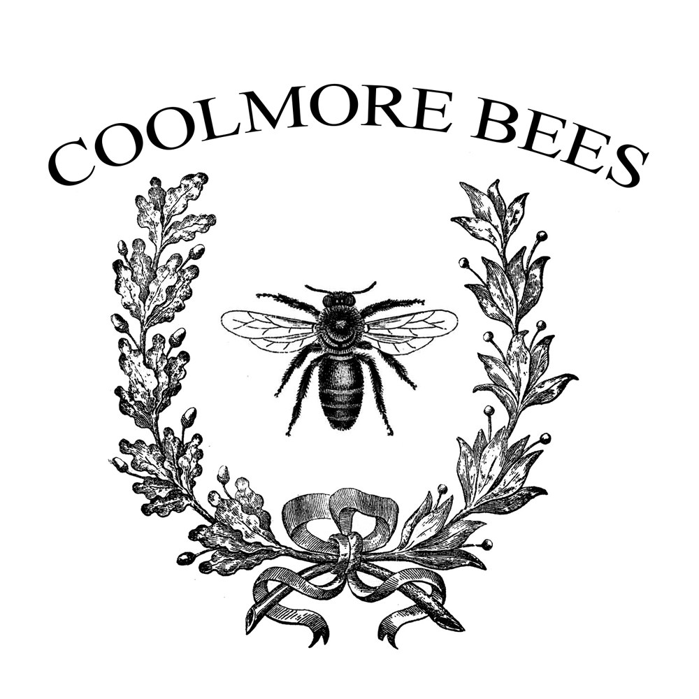 coolmore_bees_logo.png