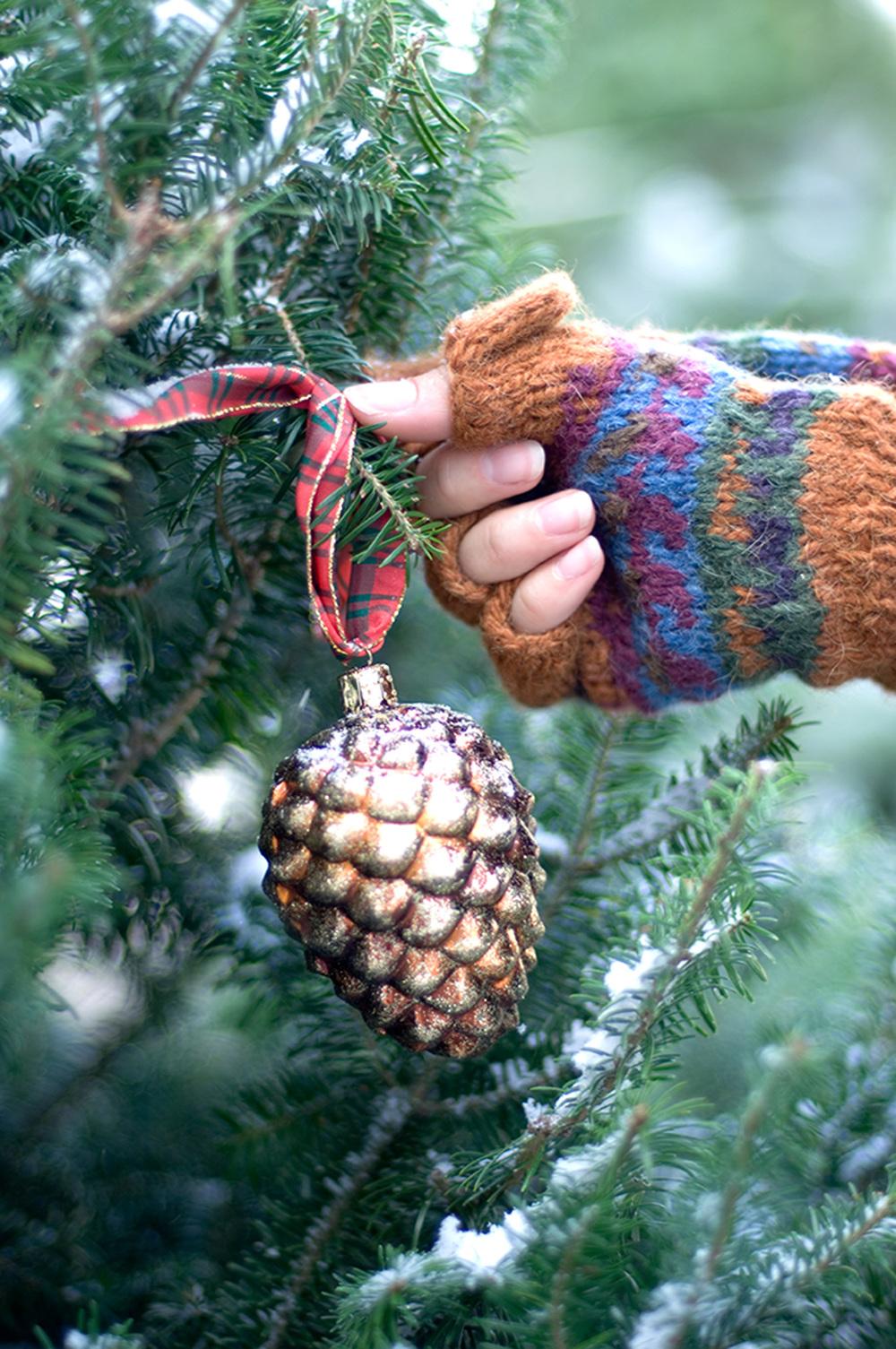 Ornament on Tree 2_2Kpx.jpg