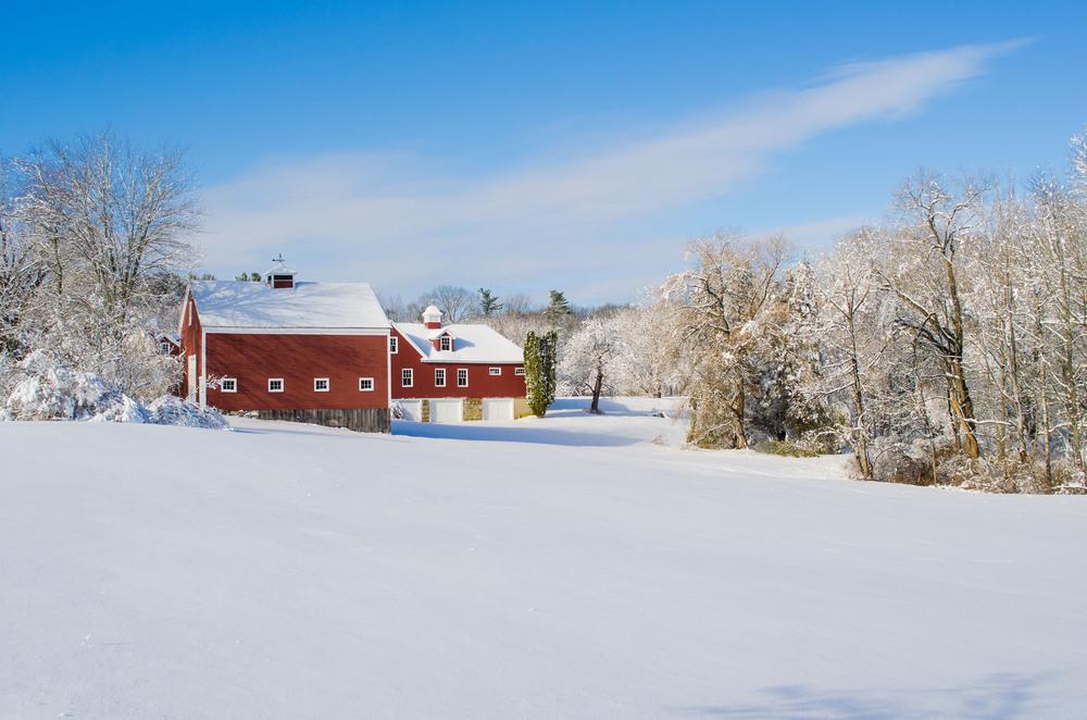 Winter Wonder Land_DSC0120.jpg