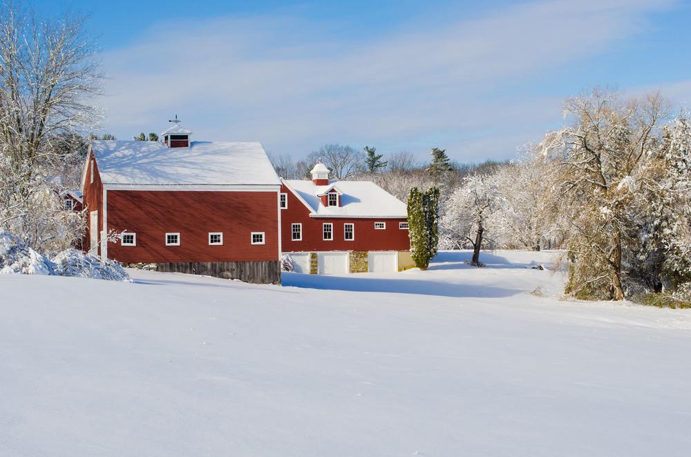 Winter Wonder Land_DSC0121.jpg