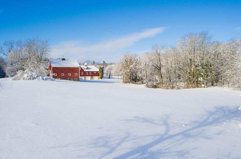 Winter Wonder Land_DSC0119.jpg