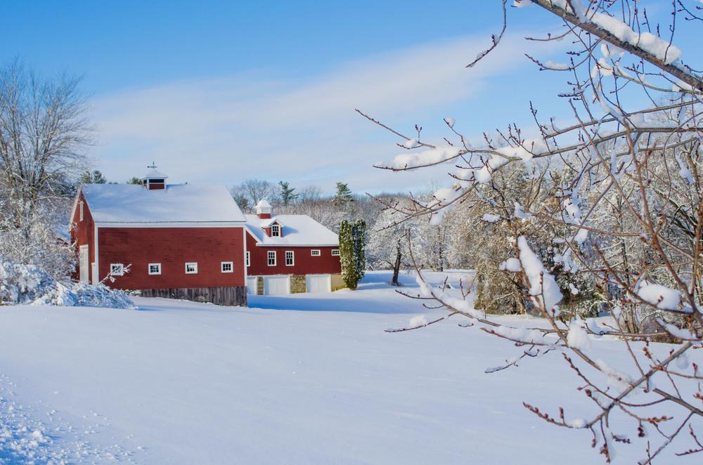 Winter Wonder Land_DSC0110.jpg