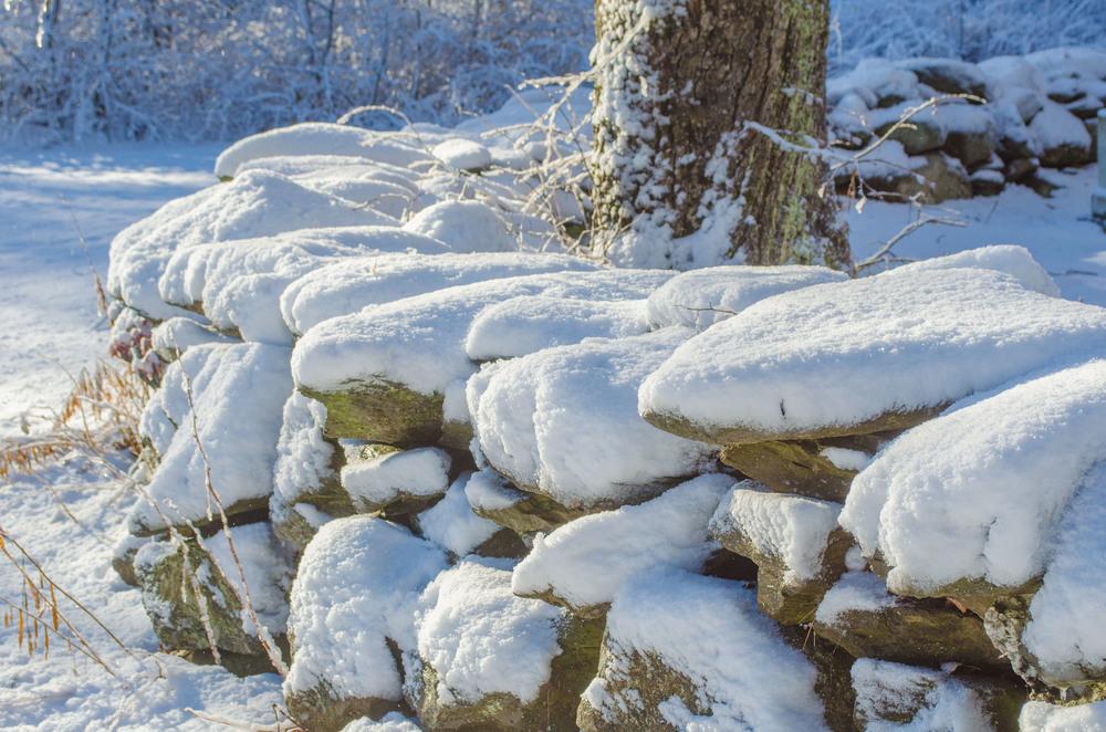 Winter Wonder Land_DSC0071.jpg