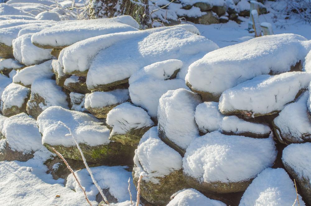 Winter Wonder Land_DSC0068.jpg