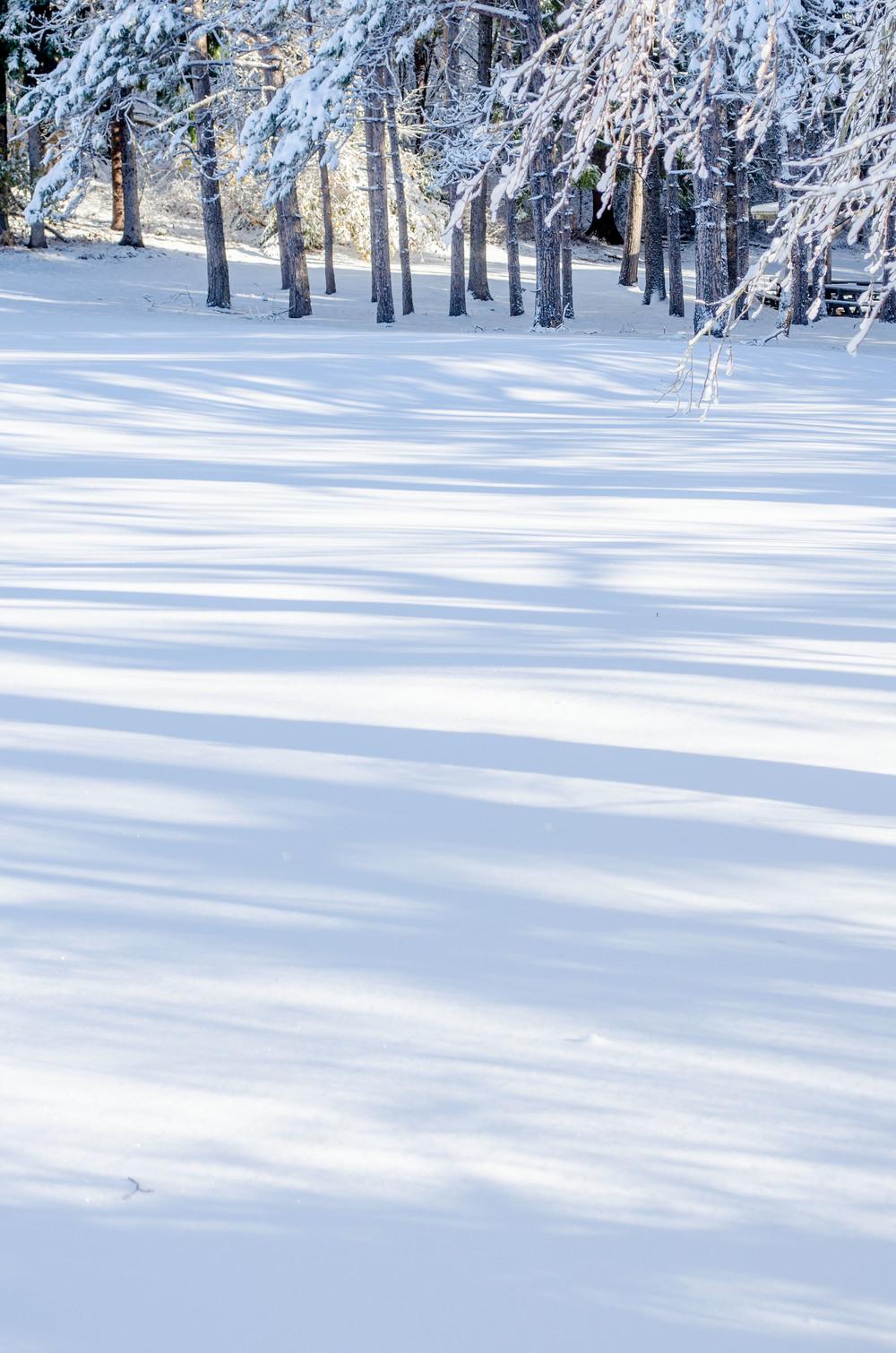 Winter Wonder Land_DSC0054.jpg