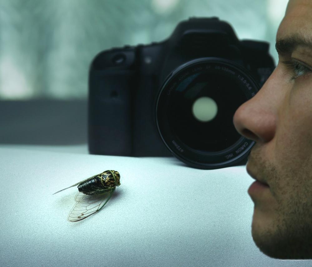 bug_camera.jpg