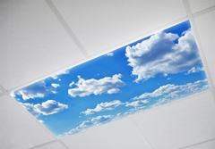 Insta-Sky Light Diffuser