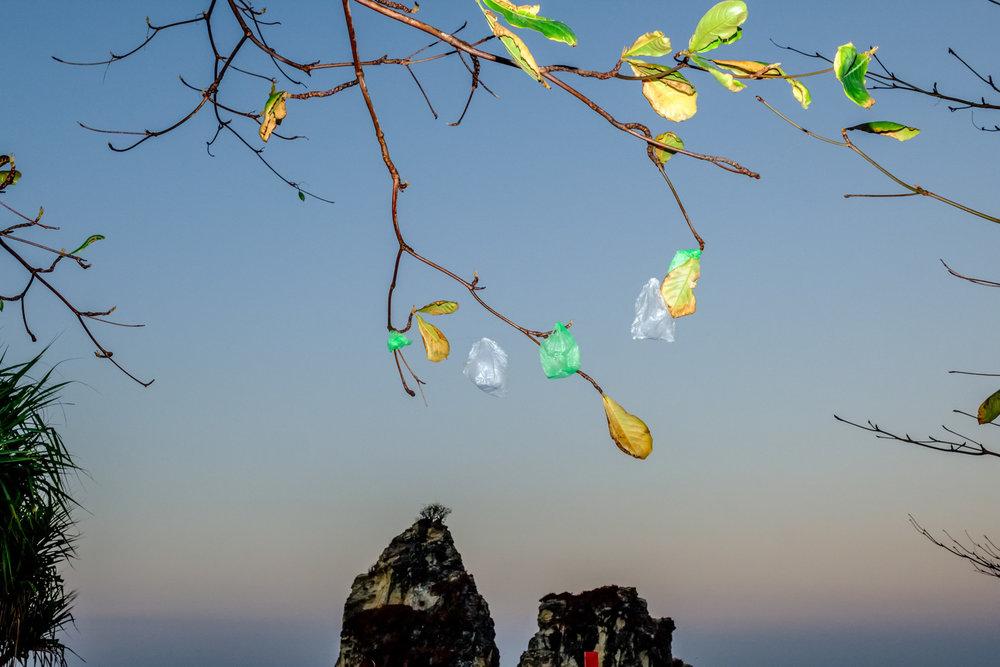 Plastik ini banyak tergantung di pohon-pohon sekitar Sawarna. Saya lupa menanyakan makna dari plastik-plastik ini ke masyarakat setempat. Fujifilm X-T2 | XF 23 f/1.4 | Godox Flash & Transmitter
