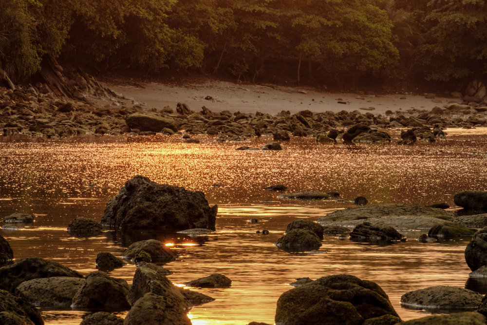 Foto saat golden hour sore hari  Fujifilm X-T2 | XF 55-200