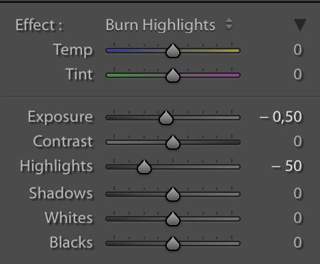 Burn Highlights dengan dua parameter yang sudah di-set nilai awalnya, yaitu Exposure (-0,50) dan Highlights (-50).