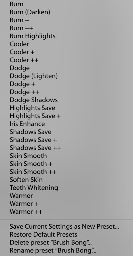 Contoh preset-preset brush yang sudah disediakan oleh Lighroom.
