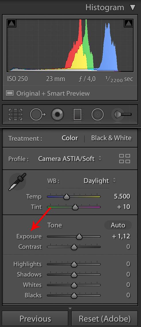 Dengan menekan  SHIFT + Double Click  pada  tulisan Exposure  akan setting otomatis hanya untuk exposure.