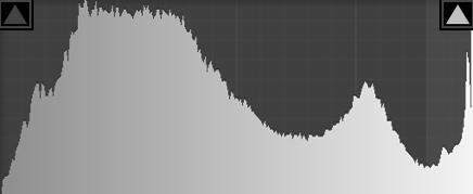 Pada histogram ini terlihat highlight clip di bagian kanan, tanpa melihat foto pun kita sudah dapat menerka bahwa ada sesuatu yang tidak benar.