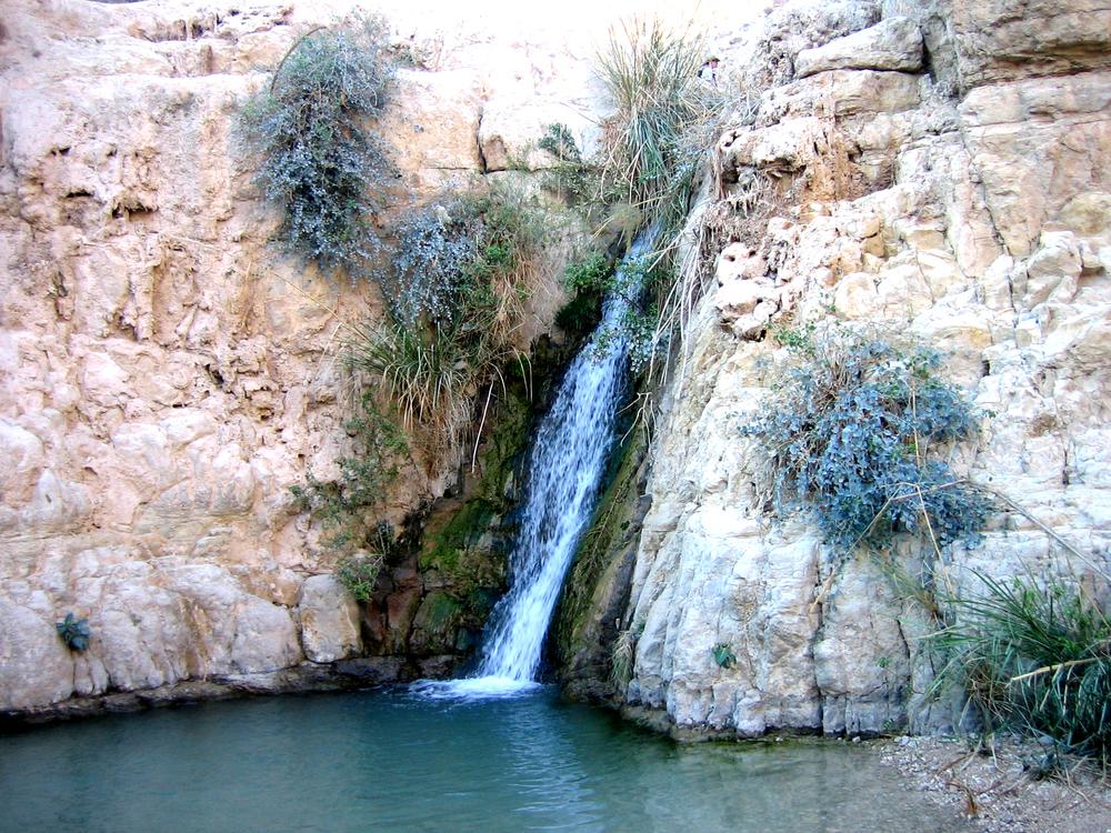 israel 110.jpg