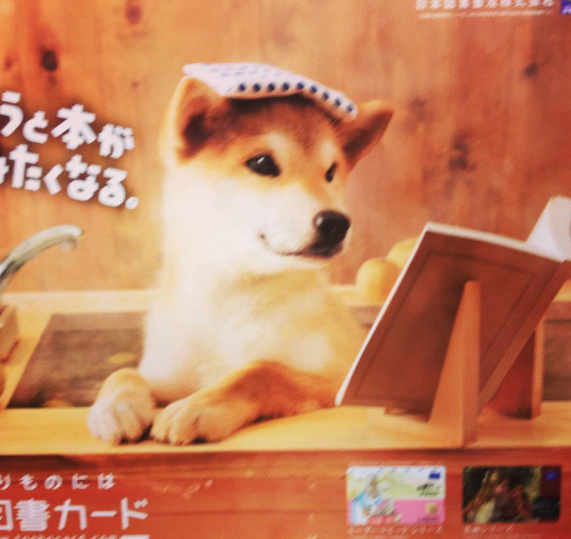 Onsen doge. So relax.