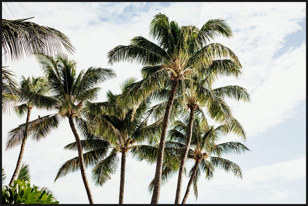 Orlando-Wedding-Photographer-destination-wedding-photographer-florida-wedding-photographer-hawaii-wedding-photographer_0028.jpg