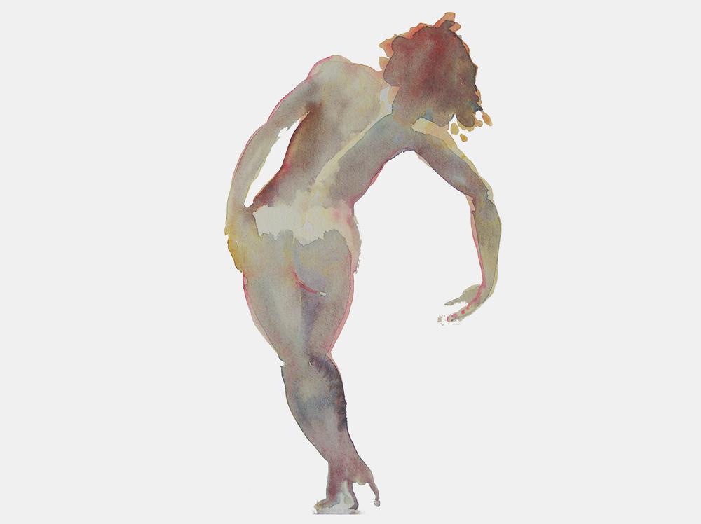 Fischl-RGB_1.jpg