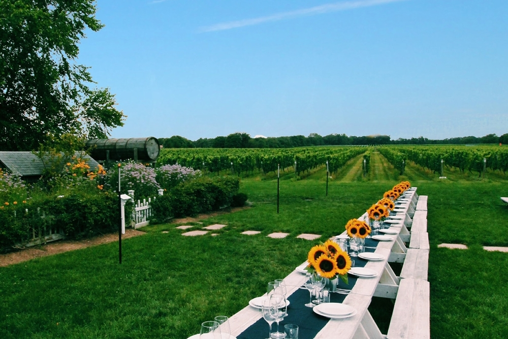 Exclusive access to special events at the vineyard.