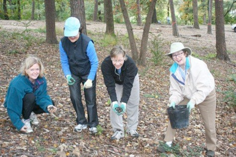 left to right, Jane Goings and Catherine Cabaniss, RMGC, Nancy Long and Trudy Evans, LGC, planting at George Ward Park       engaged in an effort to re-seed a forested area of George Ward Park. Originally designed in the 1920s by the Olmstead Brotherslandscape firm, the park had suffered from no retention of mulch and, thus, no soil in which the original trees could re-seed themselves. Club members potted sprouted seeds collected by Mr. Hughes in the park and, with the help of neighborhood groups, planted Chestnut, Southern Red, White, Post, Blackjack and Black Oak; Shagbark and Red Hickory; Persimmon and Blackgum seedlings in October of 2009 and 2010. We will continue to pot seeds and plant seedlings through 2013. These trees are not available in the nursery trade and their suitability for this site was confirmed when only five seedlings out of approximately 75 planted in 2009 were lost over the course of the hottest and one of the driest summers on record in this area.       In October of 2010 the GCA Horticulture Conference: Shirley Meneice was held at the Birmingham Botanical Gardens. Sponsored by GCA's horticulture committee, the conference was co-hosted by The Little Garden Club and Red Mountain Garden Club. A steering committee of LGC and RMGC members met weekly for a year to plan speakers, tours and workshops, register 180 attendees and administer the treasury. Members of both clubs served as hostesses during a stimulating meeting, attended and applauded by none other than Mrs. Shirley Meneice herself.       In January of 2011 we produced our first online newsletter, which reminds members of upcoming events and meetings, includes club minutes, and highlights individual achievements at the club level as well as in GCA. In November of 2011 we will sponsor an estate sale, proceeds from which will help fund speakers and exhibits at the 2014 Zone VIII meeting, which we look forward to hosting. As to the future, we plan to keep members informed in our traditional areas of interest - horticulture, conservation and floral design - and to make a difference in the community in these areas, continuing the legacy set forth by our founding members.