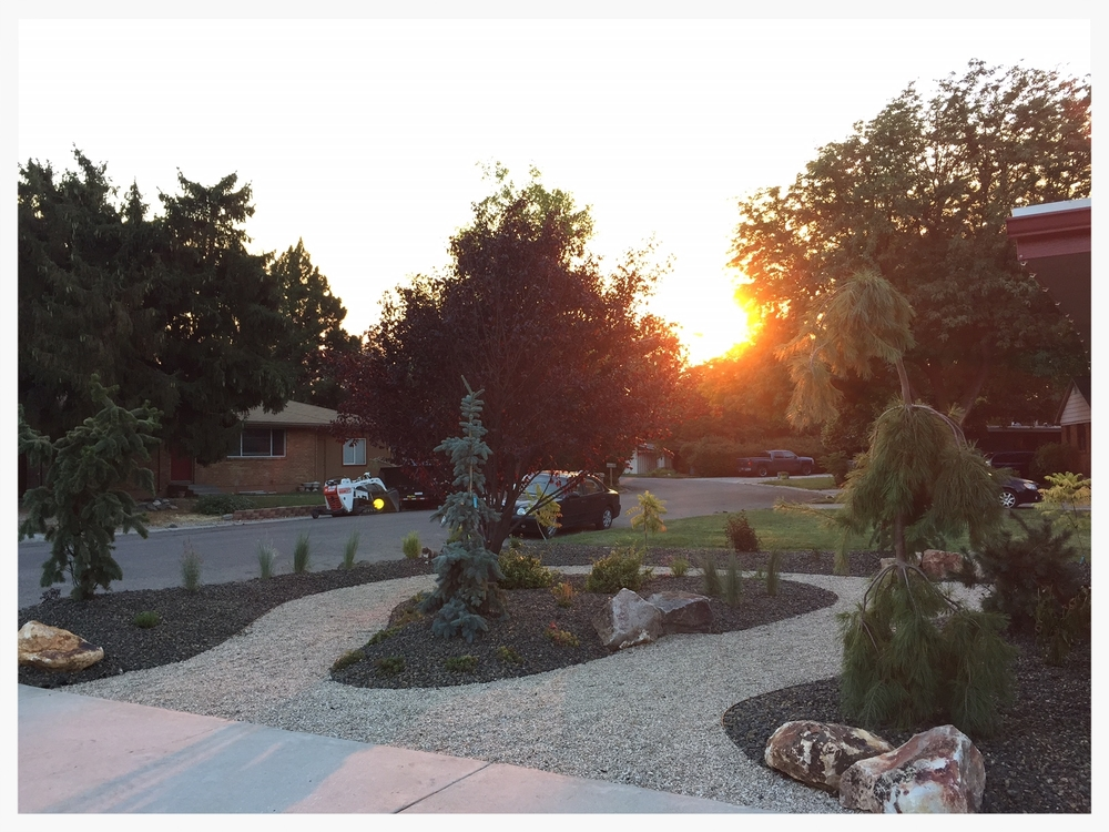 The xeriscaped front yard (via designsbykim.biz and habiscapes.net)