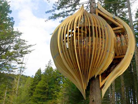 treehouse234.jpg